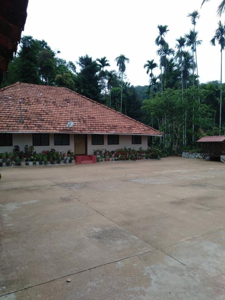 Farm stay in between coffee plantation