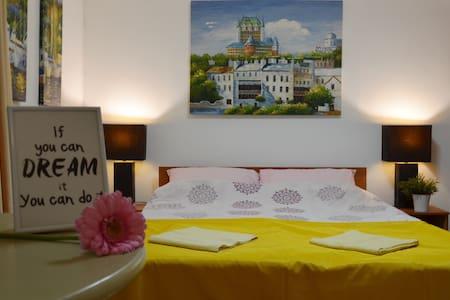Alexa's Guesthouse - Târgu Mureș - 公寓