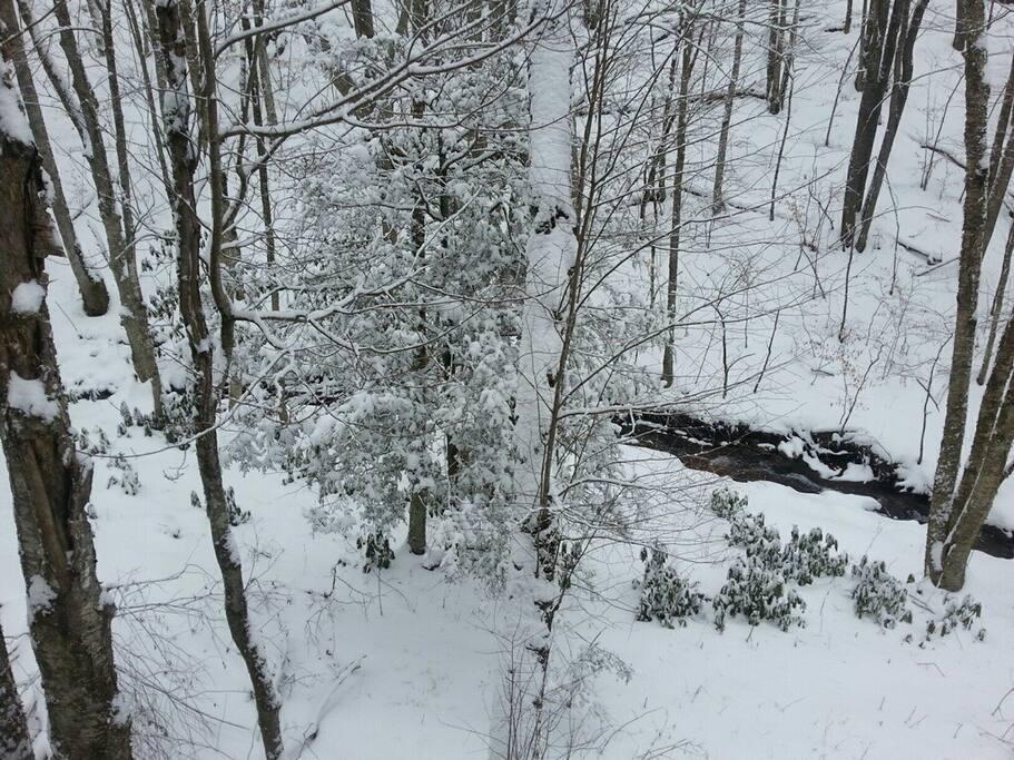 Winter scene at Mountain Creek Cabin