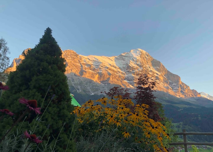 Charming Appartement in Downtown Grindelwald