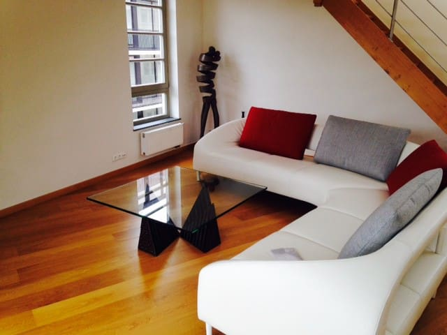 Upmarket penthouse in city centre