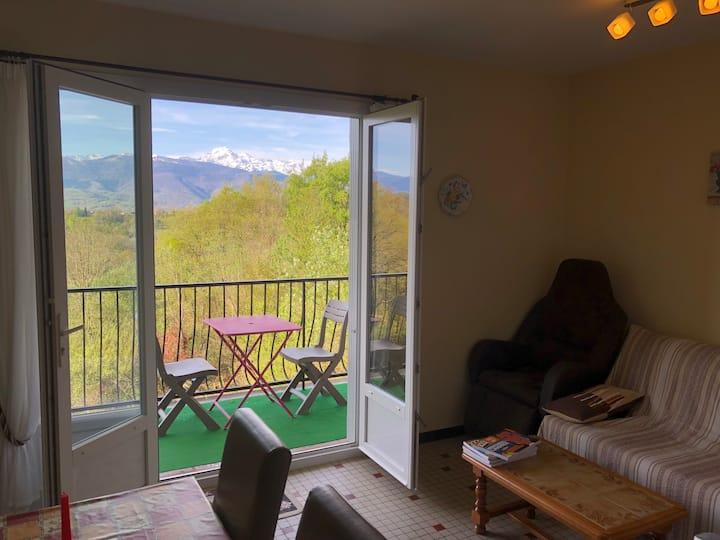 T2 n°10  vue magnifique sur les Pyrénées