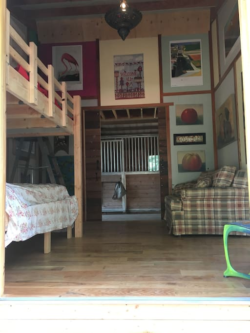 Bunk Beds & Pull Out Sofa