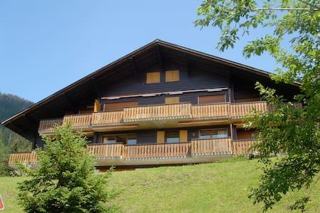 appartement familial vue Mont-Blanc - Ollon - Flat
