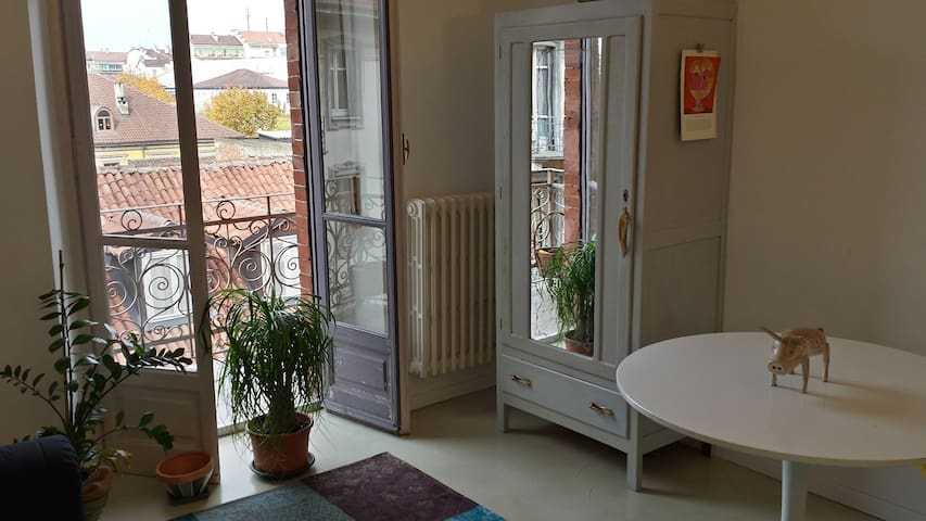 Private rooms in Vintage Apartment - Torino - Daire