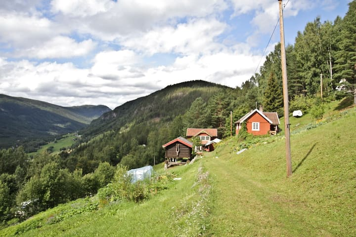 Cabin on a Eco farm - B&B Skifterud - Austbygdi - Bed & Breakfast