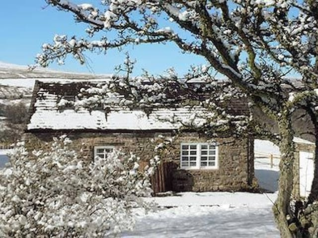 Cosy Snope cottage on quiet hilltop - Alston - House
