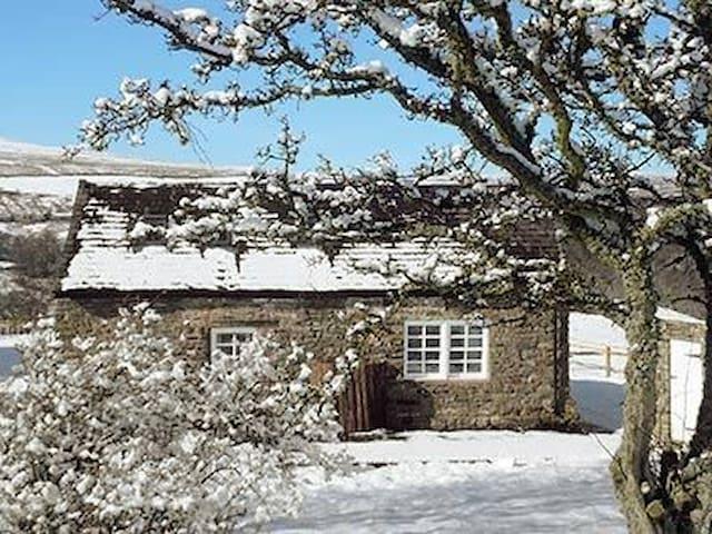 Cosy Snope cottage on quiet hilltop - Alston