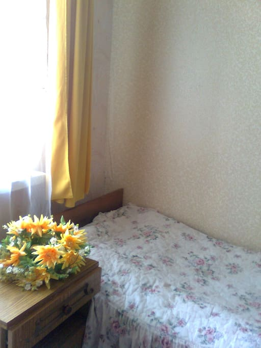 Single room for one person. Near metro and central Freedom Square. Good transportation. Room in a private house. Arbor in the yard all to stay. lots of trees. Not hot in summer. Near m.Pushkinskaya Law Academy and Institute Sitenko and many historical mon