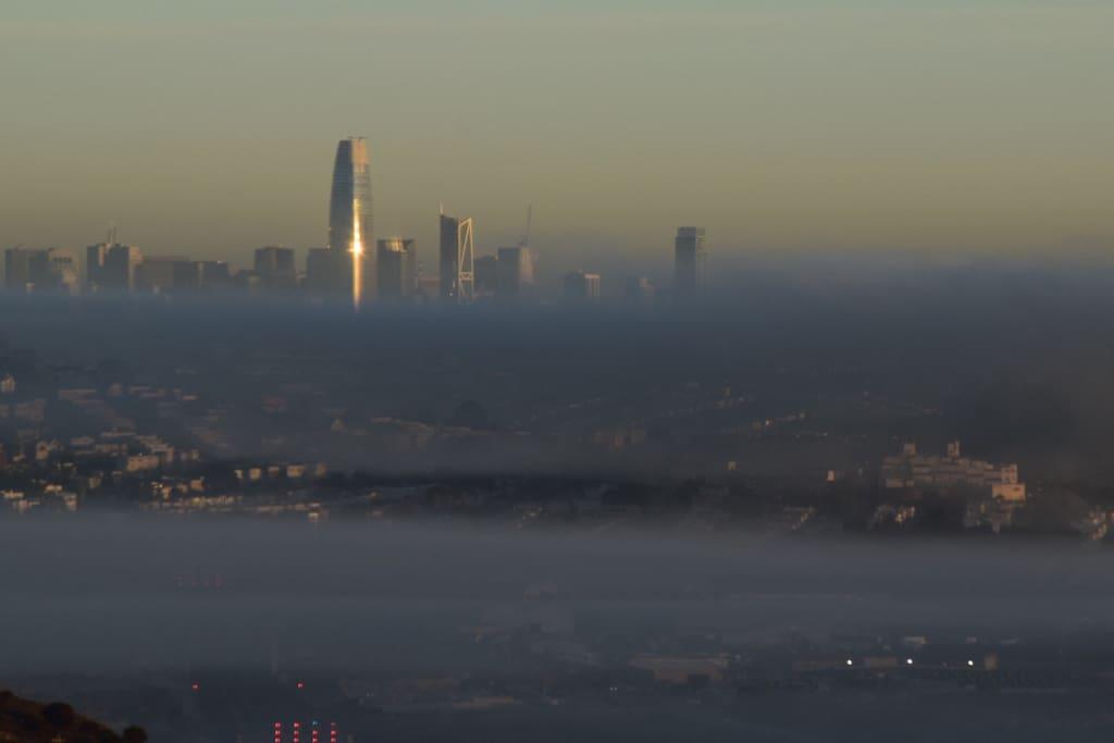 SF on a foggy morning (Brisbane still sunny)