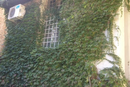 Flat with garden next to St.Sava ch - Belgrad