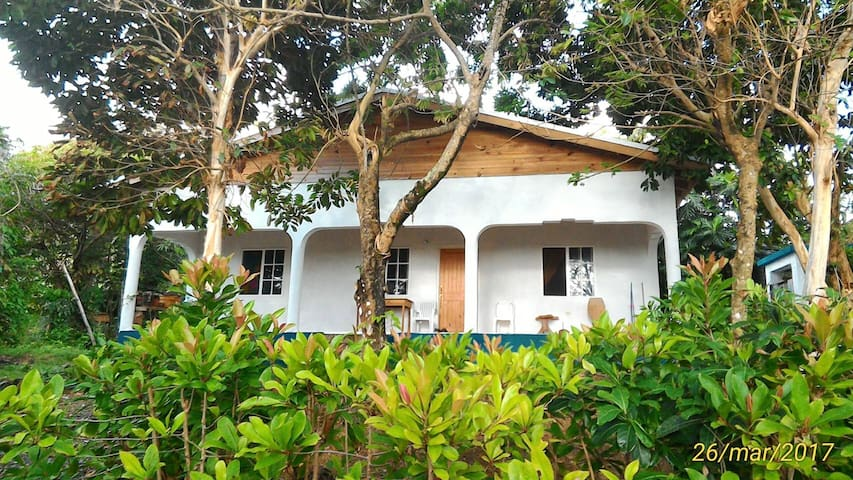 OCEAN GARDEN HOUSE - Long Bay - House