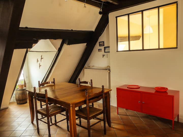 Unconventional apartment in the historical center