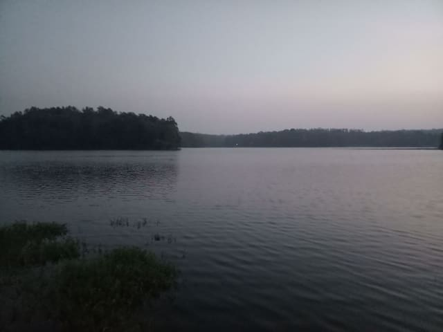 RIVER VIEW COORG-Nature at it's best!