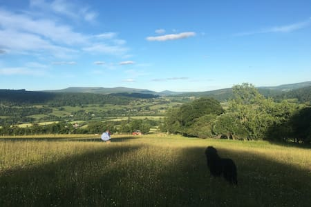 FREE Camping Experience, swap 4work - Talybont-on-Usk - Σκηνή