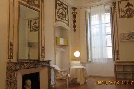 elégante suite plein centre ARLES - Arles - Apartamento