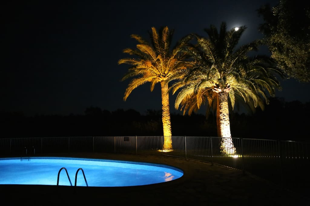Always time for a night dip in the pool