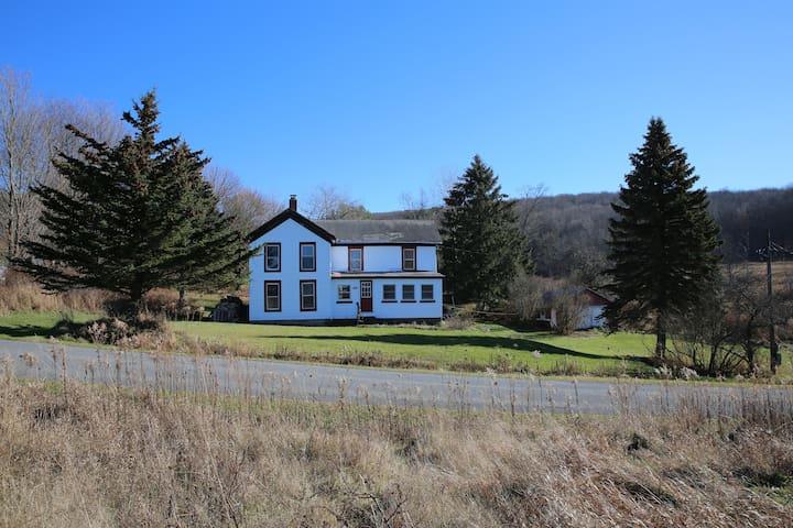 Farmhouse on 50 Acres