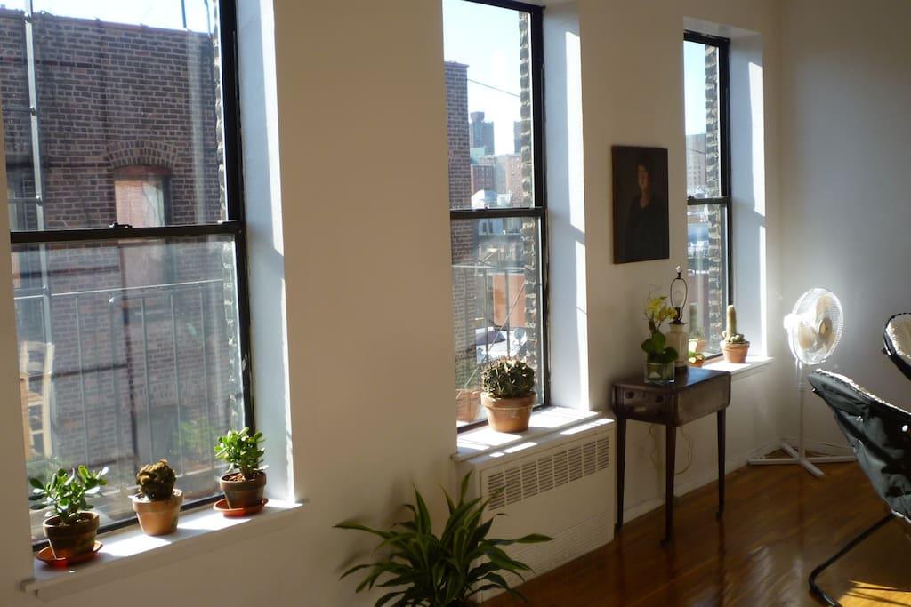 Airbnb Room New York
