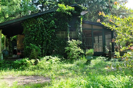 Floyd's  Cottage in Lakeside, Michi - Lakeside - Casa