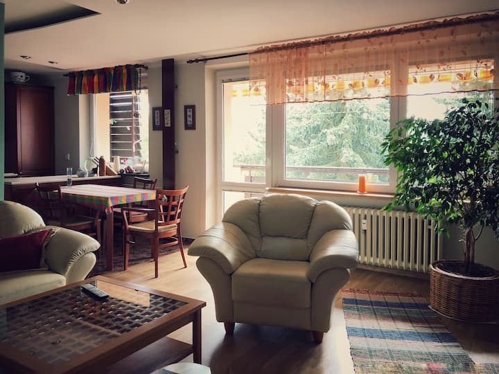 Cozy & Sunny Apartment