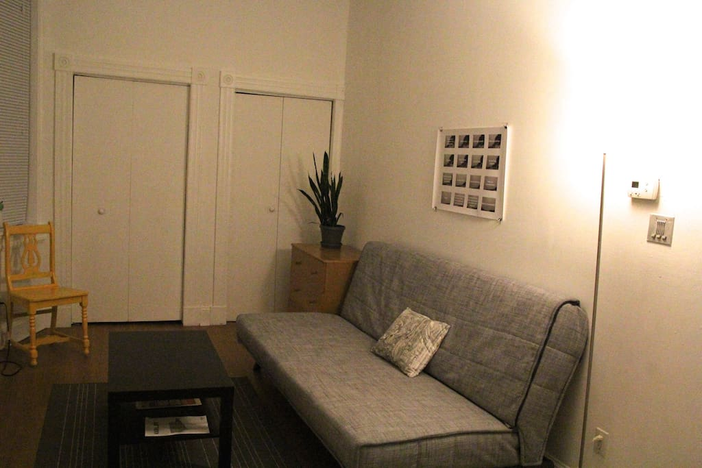 Living room and sleeping area with a full-size fold out futon - and a friendly plant!
