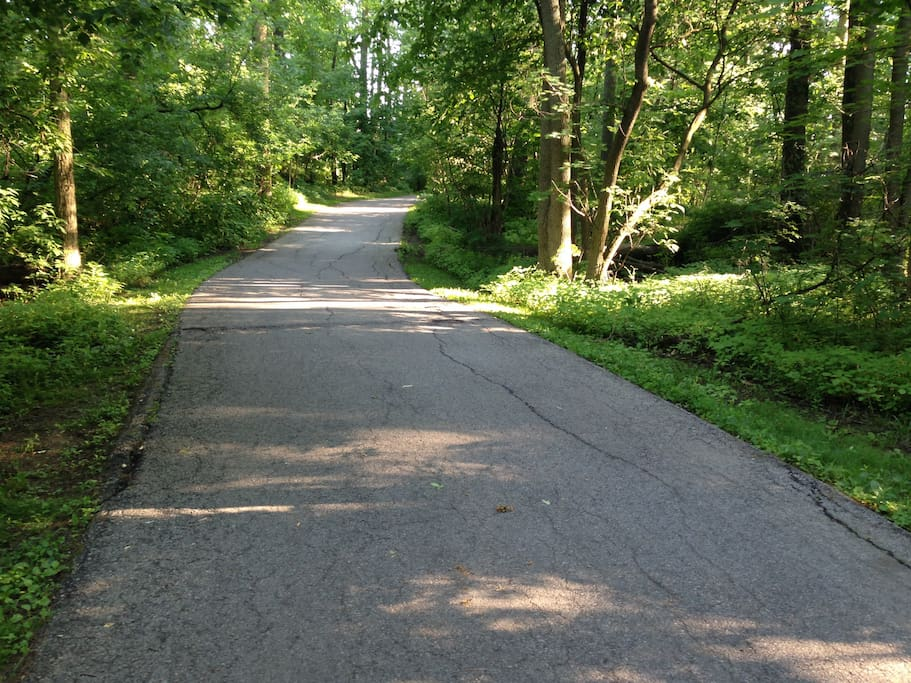 Explore the waterfront trails. I have bikes, rollerblades that you are free to use.