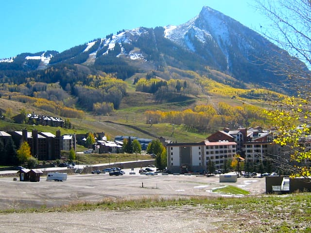 Affordable Condo~Mt Crested Butte - Crested Butte - Wohnung