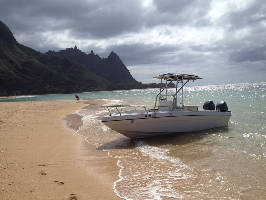 Private boat trips available