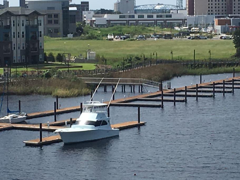 Standard Docking