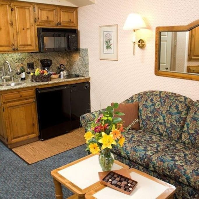 Kitchenette, pull out sofa for two