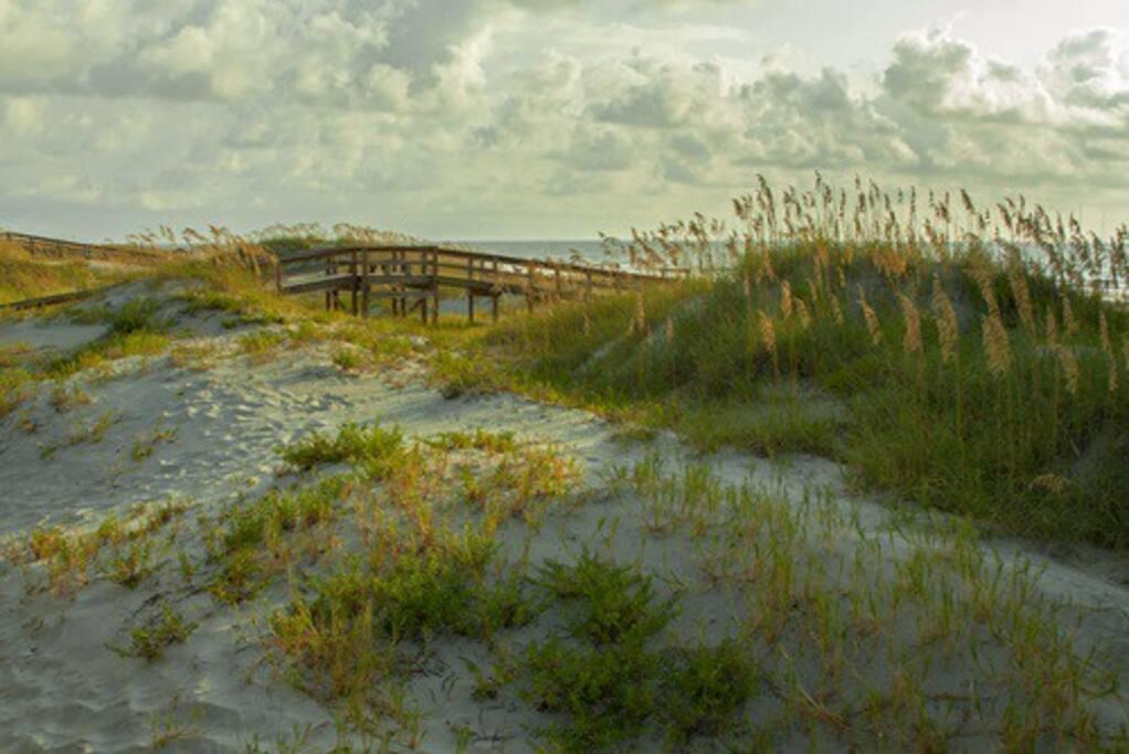 BEACH DUNES AT SAINT SIMONS EAST BEACH