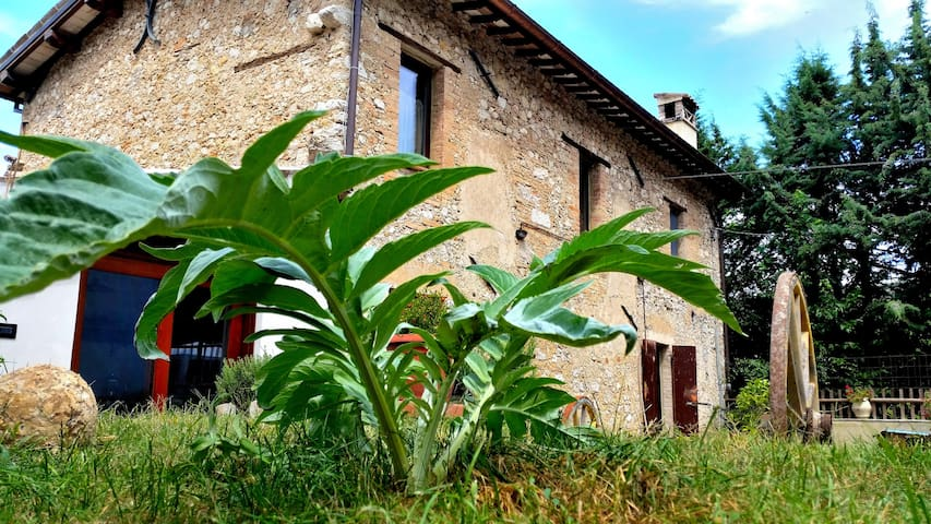 La Tana del Riccio b&b - Spoleto - Bed & Breakfast