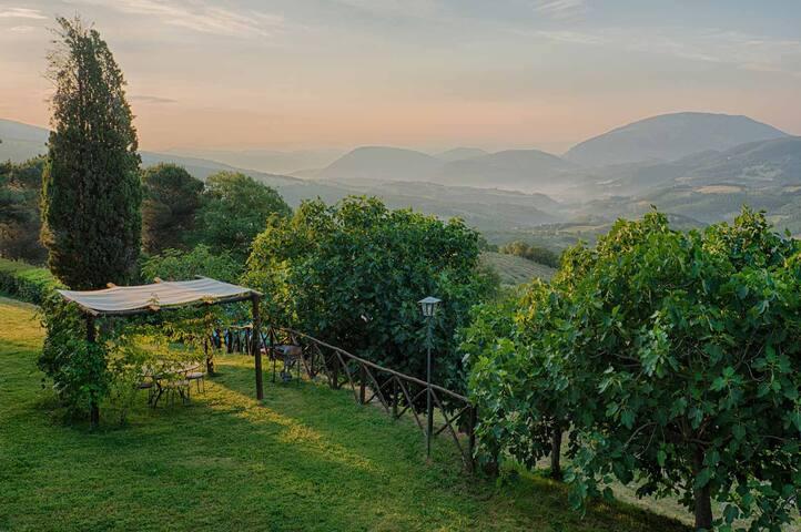 The Best view of Umbrian hills @Casa Bruciata 4ppl - Umbertide - Doğa içinde pansiyon