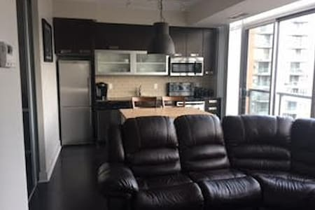 1 Bedroom private apt in downtown Toronto - Toronto