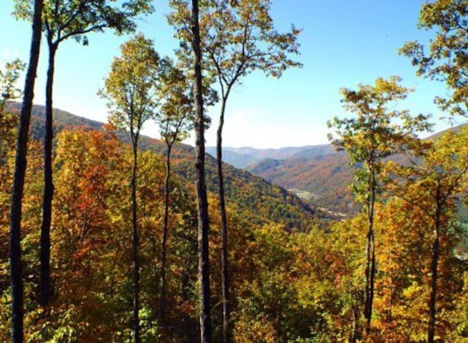 Autumn view from decks
