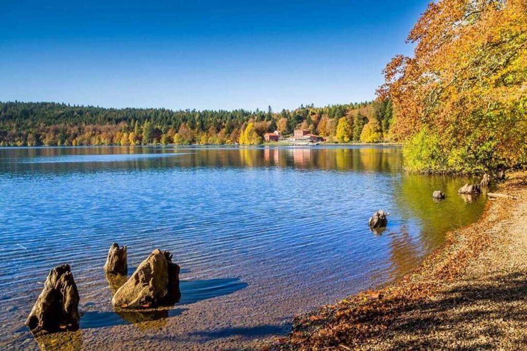 En balade, peut-être vous reposez-vous au bord du lac du Bouchet