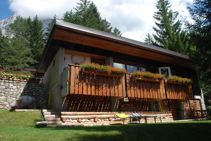 CHALET IN THE WOOD - Borca di Cadore - Chalé