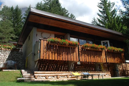 CHALET IN THE WOOD - Borca di Cadore - Alpehytte