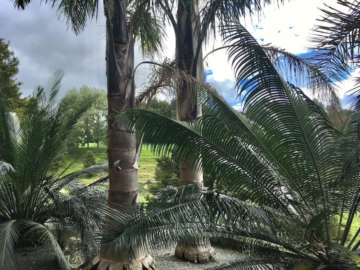 Kauri Retreat - a quiet beautiful paradise.