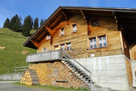 Sennhütte Bärgli - Diemtigen - 샬레(Chalet)