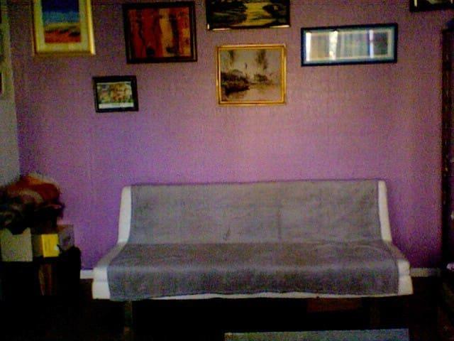 Appartement agréable sans vis-à-vis - Angers - Pis