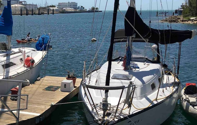 "Hunter Cherubini Sailboat, ""Seesea"" 30 foot."