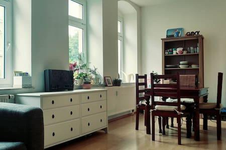 Sonniger gemütlicher Altbau  -  sunny cozy rooms - Drezda - Lakás