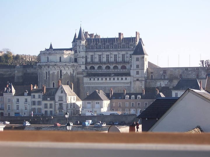Amboise castle view, Cozy, Calm, Wifi, Netflix