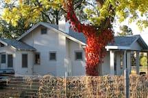 Fall colors at the farmhouse