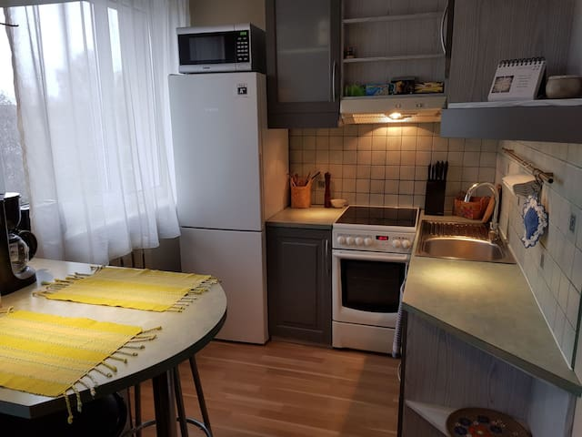 Comfortable apartment in Mustamäe