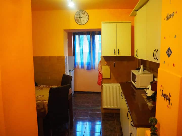 1 bedroom in apartment, cozy and well maintained