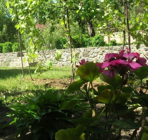 Сдам в живописном пригороде Киева - Hostomel' - Casa