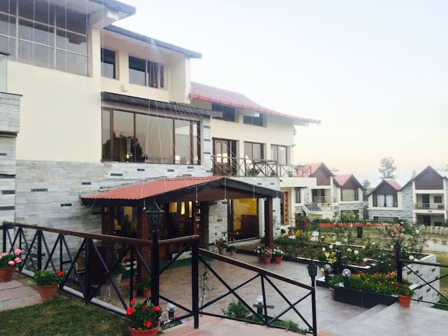 Cozy Stay Cottages With Mesmerizing View - Shimla - Бутик-отель